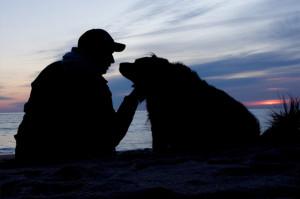 「カーミングシグナル」で犬と話そう!絆を深める覚えておきたい9つの犬語