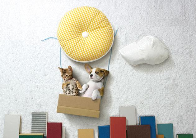 ペットの寝相アート?
