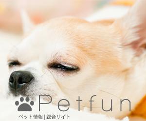 Petfun