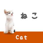 ネコのしっぽの振り方