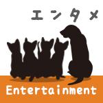 『ひまわりと子犬の7日間』Blu-ray&DVD 8/7日(水)発売!