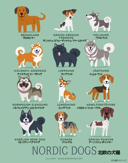 北欧の犬たち