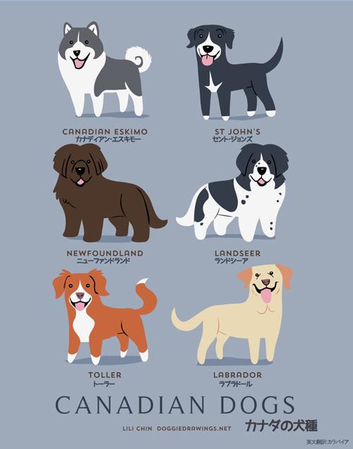 カナダの犬たち