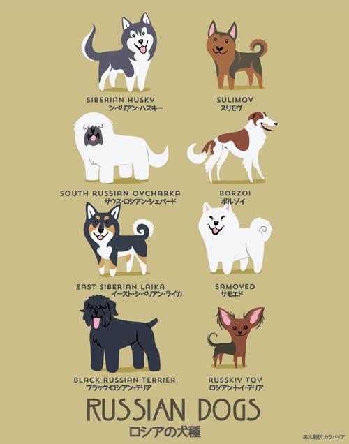 ロシアの犬たち