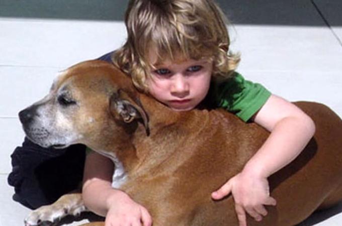 愛する動物はなぜ人間よりもずっと早く死んでしまうの?6歳児が答えたその理由に世界中が感動