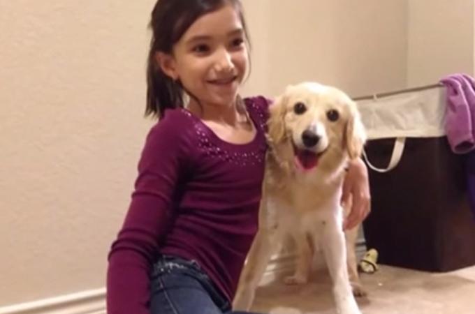 悲しい過去を持つ動物たちが新しい家族と出会い笑顔を取り戻すまとめ動画
