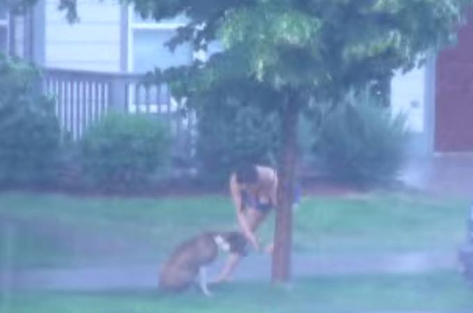 放っておけない!暴風雨の中、木につながれ置き去りにされた犬を救出するため隣人の女性がとった行動に感動