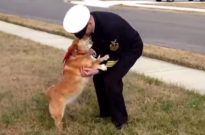 もう一度会いたい!ガンのため余命宣告を受けた犬が飼い主さんと再会
