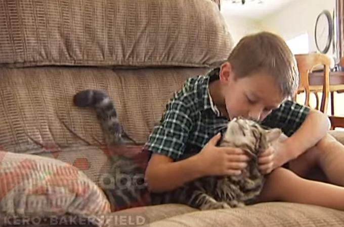 猛犬に噛みつかれた少年を救ったのは愛猫!その勇敢な姿に世界中から賞賛の声
