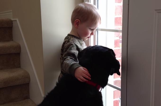 新しい家に引き取られホームシックの犬。男の子が優しく肩を抱き慰める姿に心温まる