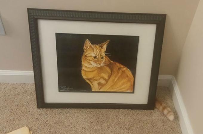難易度MAX!カメレオンもおどろきの擬態の天才猫ちゃんたちの画像23選