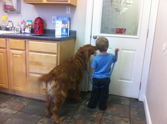 少年と犬の友情10
