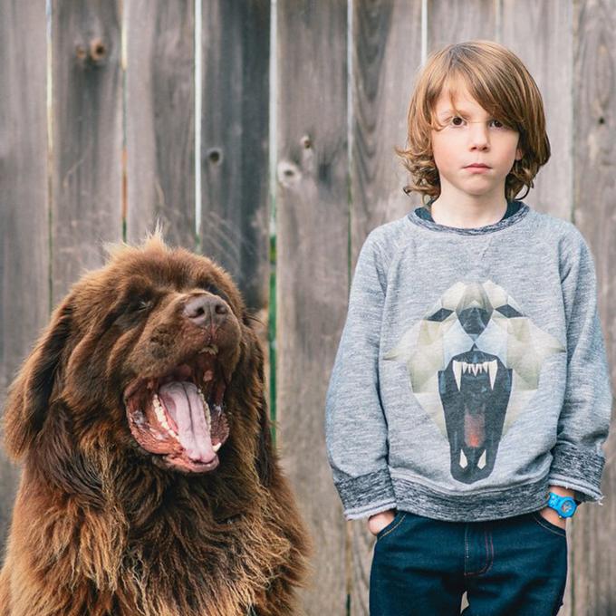 少年と犬の画像12