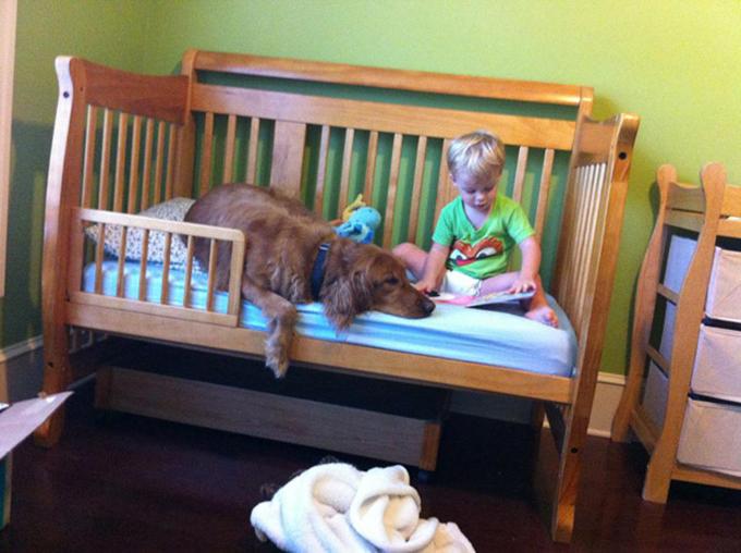 少年と犬の友情2