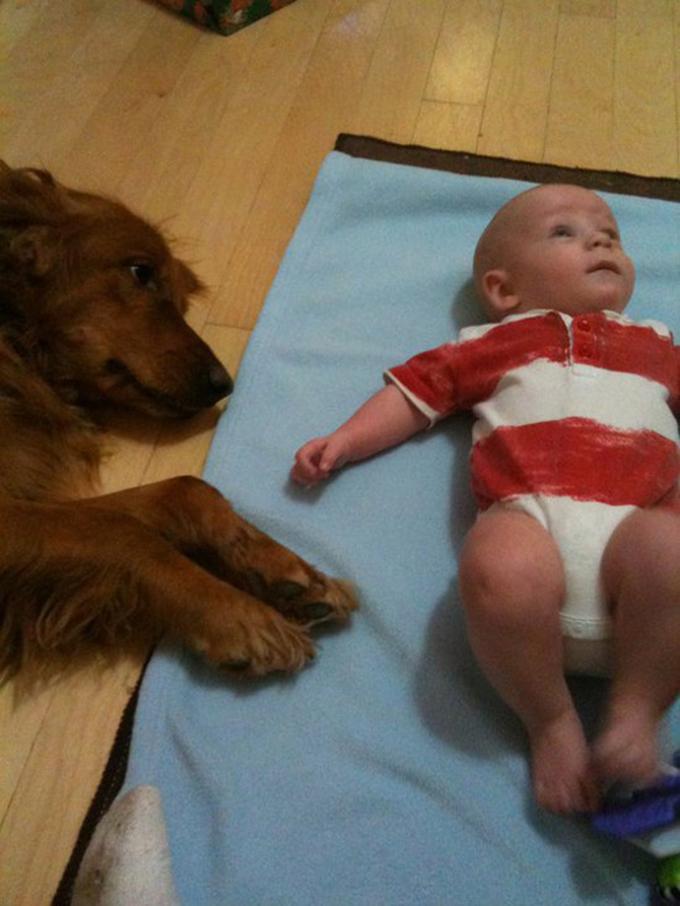 少年と犬の友情3
