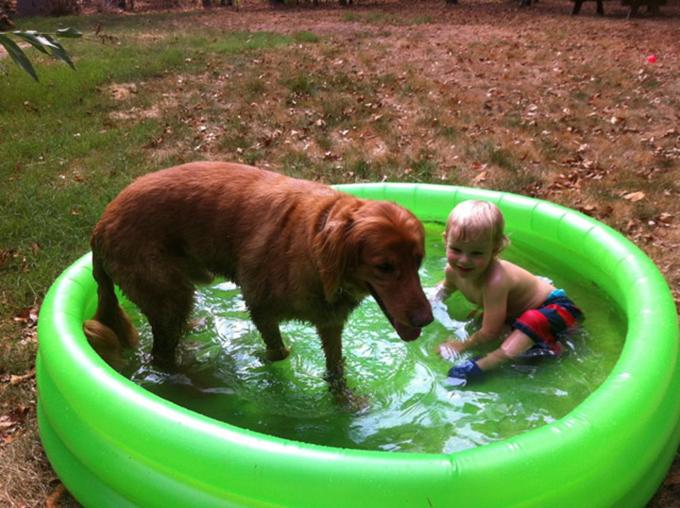 少年と犬の友情4