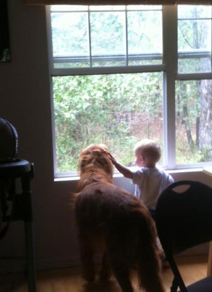 少年と犬の友情5