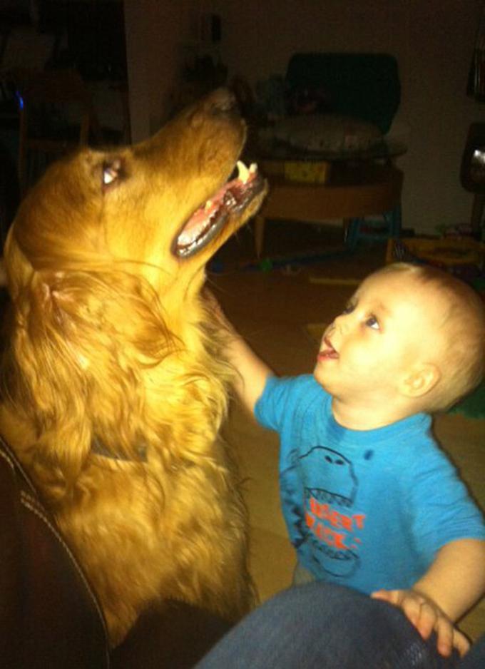 少年と犬の友情6
