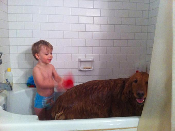 少年と犬の友情8