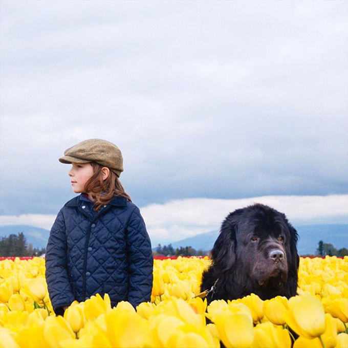 少年と犬の画像9