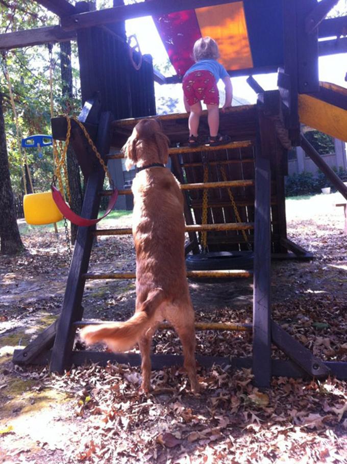少年と犬の友情9