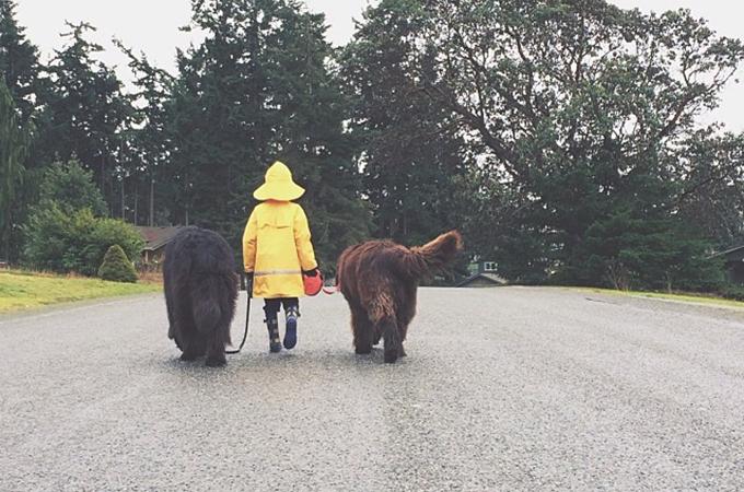 ボクたちいつまでも親友だよね!犬と子供の美しすぎる友情を写した画像