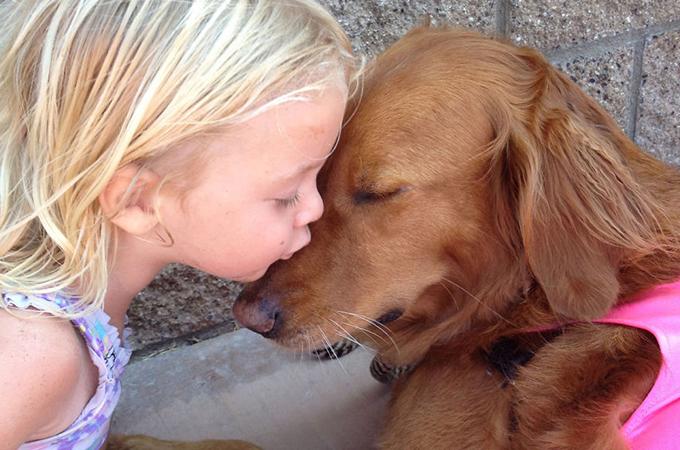 ハンデを持つ人たちに希望を与える波乗り介助犬の感動のストーリー