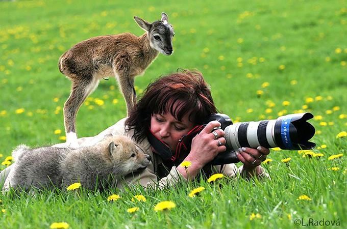 野生動物とカメラマンの決定的瞬間をとらえた心あたたまるステキな画像
