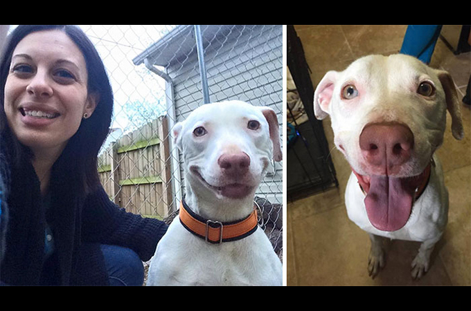 新しい家族を見つけた1匹のホームレス犬が最高の笑顔を取り戻す