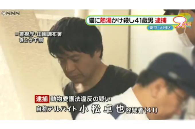 猫に熱湯…「10匹くらい殺した」男逮捕(日本テレビ系(NNN))