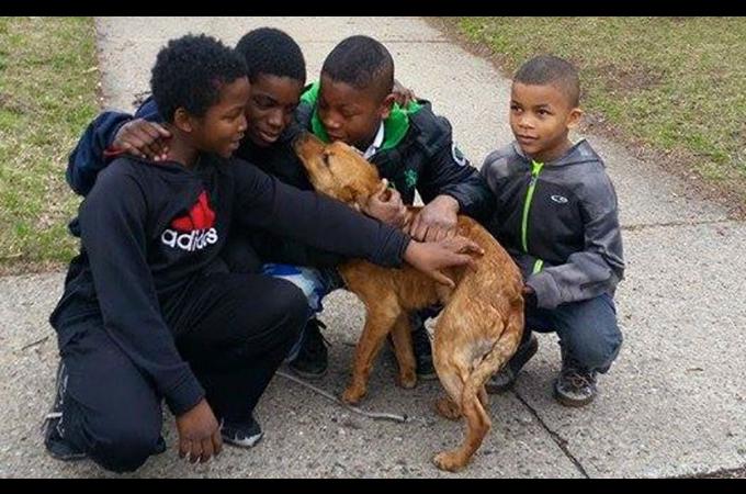 4人の少年が空き家にコードで結ばれ捨てられた1匹の犬を救い出す