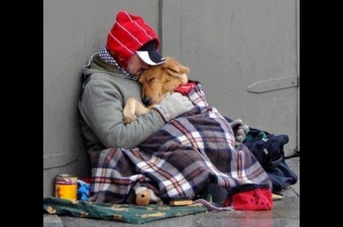 大切な愛犬といつまでも一緒!「なによりもペットは大切」と感じる写真10選