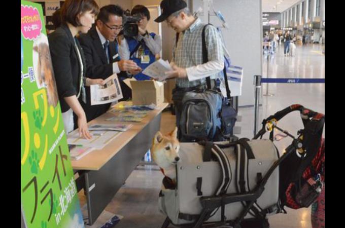 航空機の客席にペットと一緒に乗れる「ワンワンフライト」