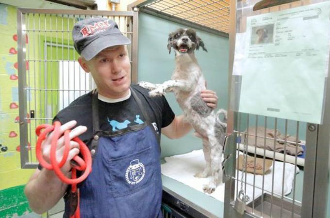 シェルター(動物保護施設)で暮らす犬のために無償でトリミングする男性