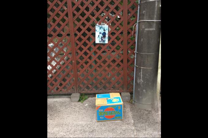 宇都宮動物園に捨てられた猫。動物園の投稿に賛否両論
