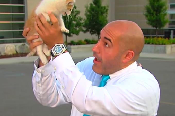 生中継中に迷い込んだ子猫をリポーターが保護!中継を中断するもスタジオが笑顔に。