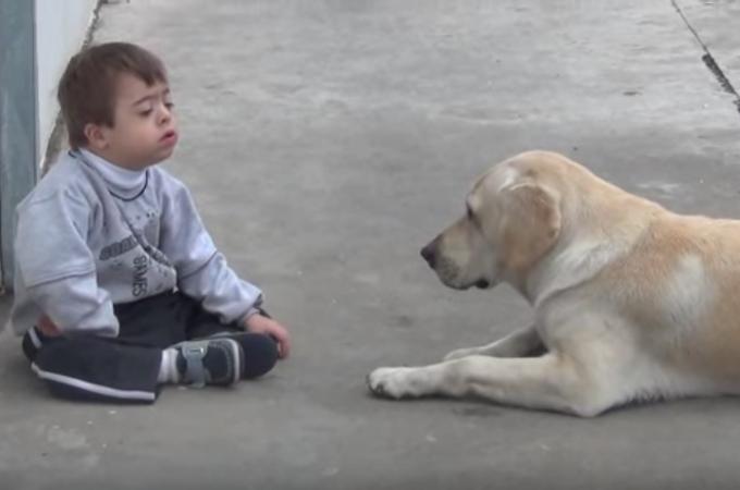 【動画】ダウン症の少年に近づきたい!離れられても諦めず何度も近づこうとするワンコ