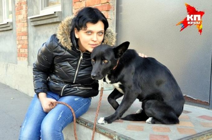 命を救ってくれた女性を求め300kmの道のりを歩いた犬。その女性の言葉に思わず涙