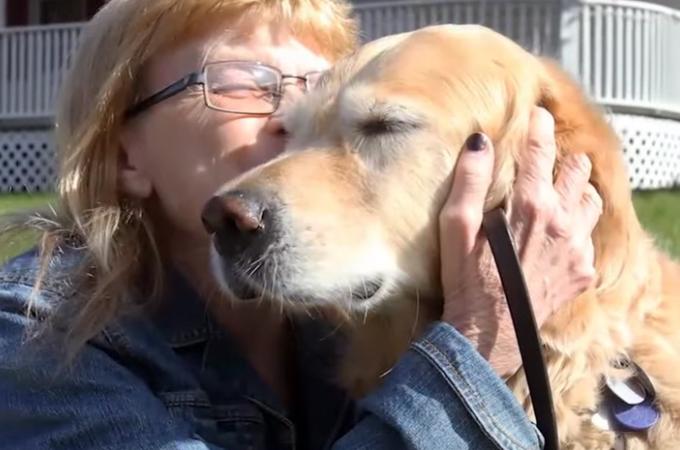 飼い主さんを守る為バスの前に飛び出した盲導犬。重傷を負うも無事に元の生活へ