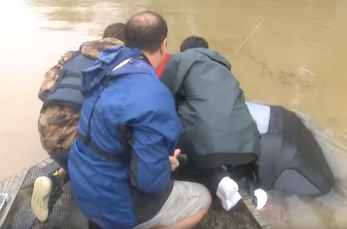大洪水の影響で沈みゆく車から女性とその愛犬を救った男性