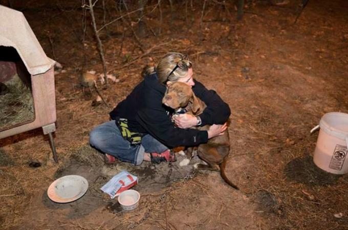 盗まれてしまった愛犬。虐待され噛ませ犬にされながらも発見され飼い主の元へ帰る
