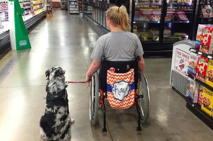 介助犬と暮らす17歳の少女。大事なパートナーが可愛がられたことによって起こってしまった事故とは