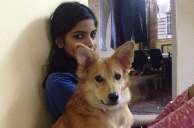 婚約者に「僕と結婚するなら犬を捨てて」と言われた女性。そして彼女の決断とは