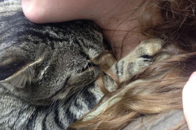 保護施設を卒業する女性に「行かないで」と想いを伝えた猫。その行動に女性はある決心する