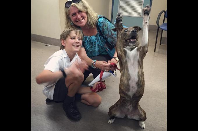 飼い主との突然の別れ以来、元気がなかった保護犬。里親が決まった瞬間に見せた最高の笑顔