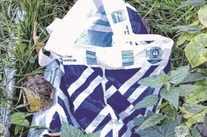 袋の中に捨てられた子犬5匹。通学途中の学生によって発見され保護される