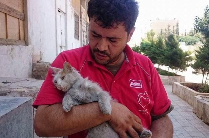 戦地に取り残されてしまった猫たちを保護するために立ち上がる1人の男性。