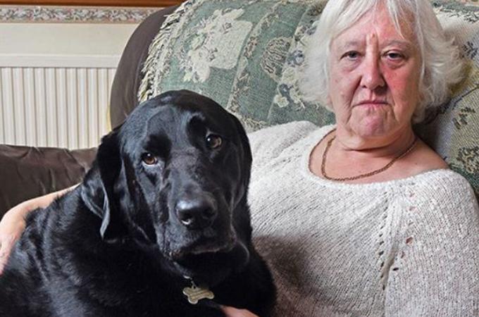 犬の能力に驚きを隠せない!愛犬の嗅覚によって救われた女性。