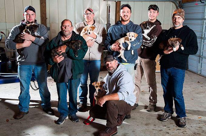 独身の男たち8人と出会った8匹の犬たち。これが運命となり、最高の結果となる