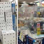 山積みにされた白い箱には動物たちが。新潟のホームセンターで「ペット大放出400頭」と安売りされた命